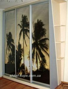 пальмы на шкафу