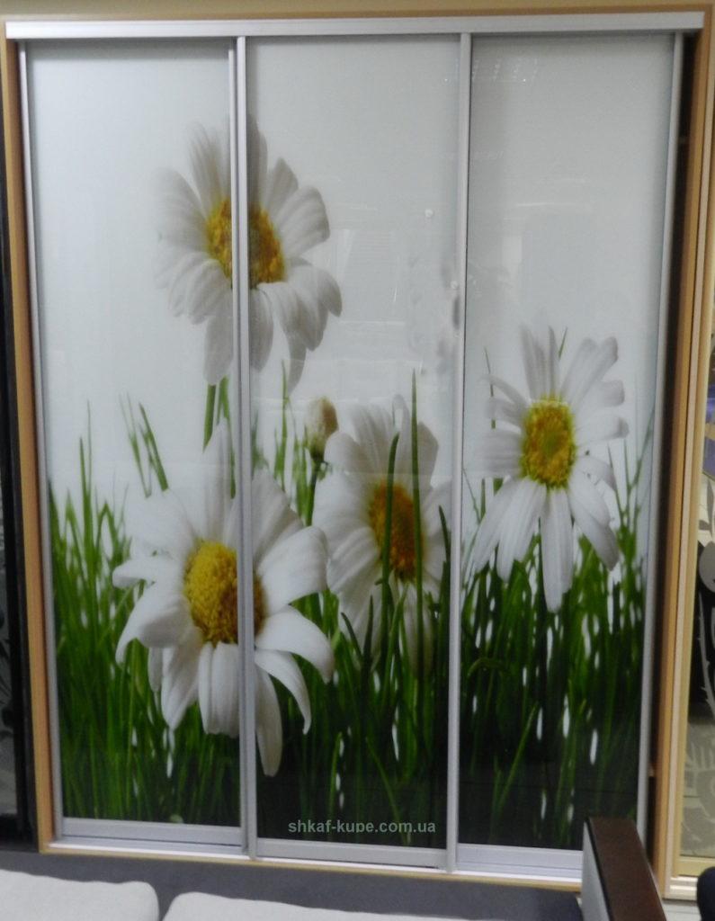 шкаф купе с цветами
