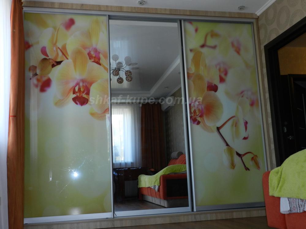 Шкаф-купе для гостиной (Борщаговка)